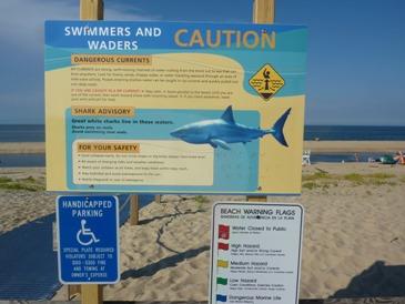 Il cartello avverte dei pericoli dovuti a squali e correnti a Cape Cod