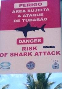 I cartelli che avvertono del pericolo squalo a Boa Viagem
