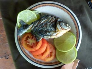 Il piranha grigliato, piatto del bacino dell'Amazzonia