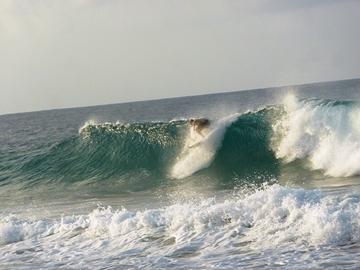 Alcune volte a Fernando de Noronha si divertono più i surfisti