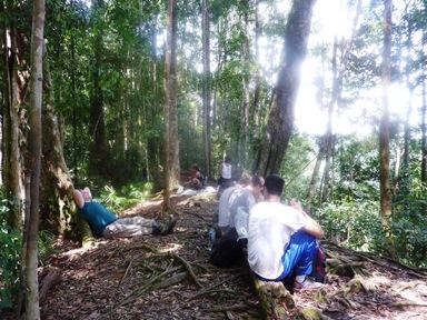 Un momento di doverosa sosta appoggiato a un albero nella giungla