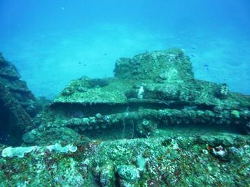 Il cingolato sulla Nippo Maru