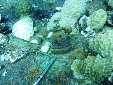 Un telefono in mezzo ai coralli sulla Fujikawa