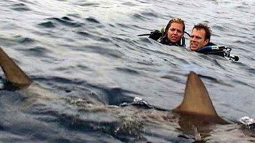 Blanchard Ryan e Daniel Travis in Open Water